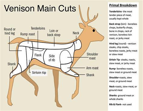 butchering a deer diagram deer processing and butcher service