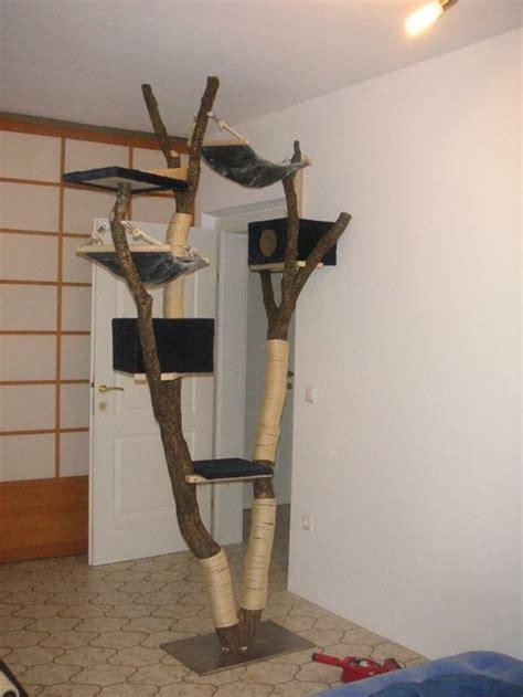 kratzbaum selber bauen  ideen und bauanleitungen