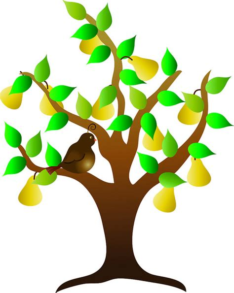 fruit tree clipart pics for gt fruit trees clip