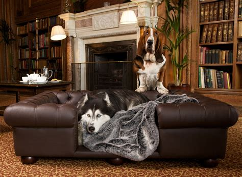 ultra plush outlaw sofa leather sofa enchanted home pet ultra plush outlaw