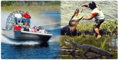 fan boat rides new orleans sw tours airboat sw tours