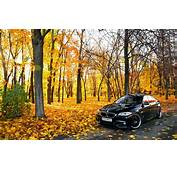 Car BMW Leaves Trees Road Wallpapers HD / Desktop And