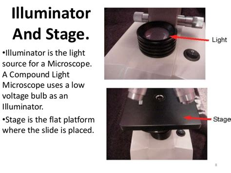 light source microscope function compound microscope basic