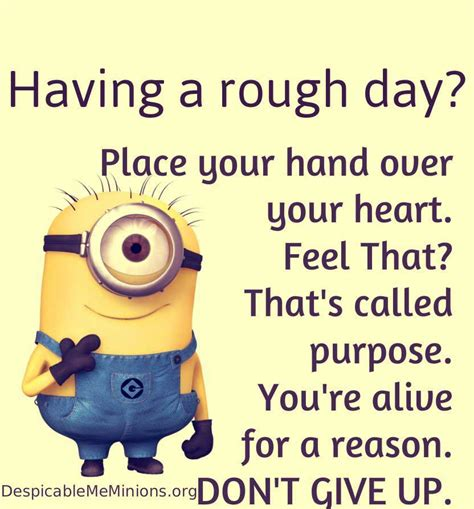 Minions Quotes funniest minion quotes and pictures of the week