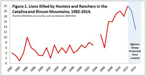Tucson Lion Killings Dropped Dramatically in 2014