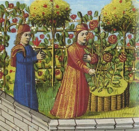 giardini medievali il giardino medievale di torino un prezioso ecosistema