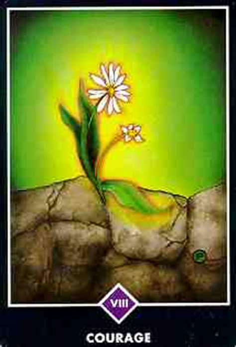 imagenes tarot osho zen significados del tarot osho zen