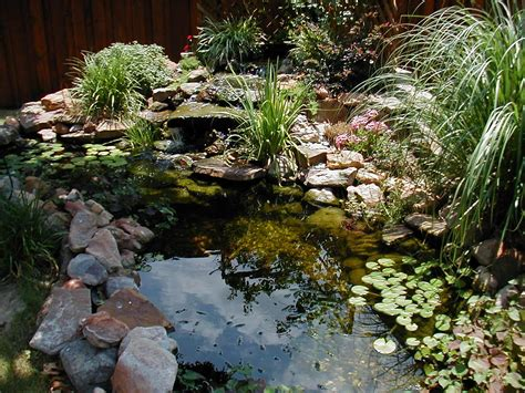 Pond Ideas For Small Gardens Pond Landscaping Ideas Landscaping Gardening Ideas