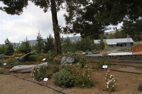 Troodos Botanical Garden Troodos Botanical Garden Amiantos Asbestos Mine Troodos Mines Amiandos Eea Grants Cyprus
