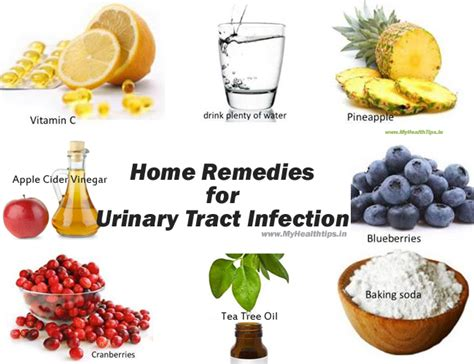 top home remedies for uti urinary tract infection