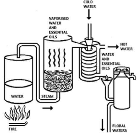 Minyak Nilam 1 Liter my mine agroindustrial technology minyak nilam