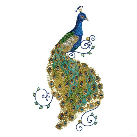 embroidery design of peacock swnpa136 peacock embroidery design