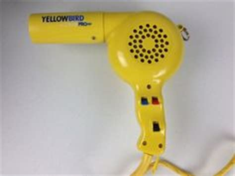 Yellow Bird Hair Dryer 1000 images about if i could turn back time on