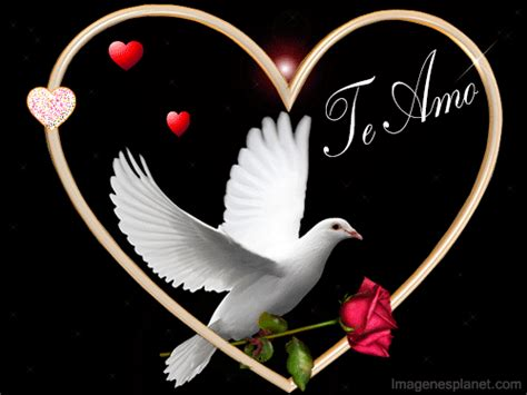 imagenes bonitas movimiento imagenes de amor con movimiento lindas para dedicar de