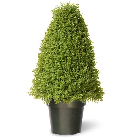 boxwood artificial tree  green growers pot