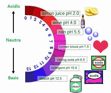 acids bases and salts properties arrhenius concept