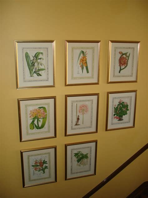 The Botanical Prints. My dear hubster hung them on our stairwell   he had to use a laser and