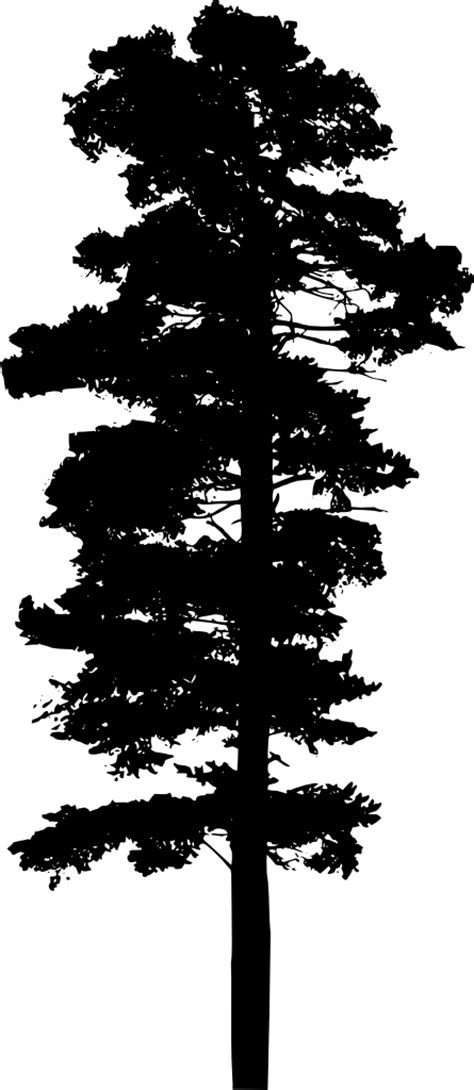 10 Tree Silhouettes (PNG Transparent Background)   OnlyGFX.com