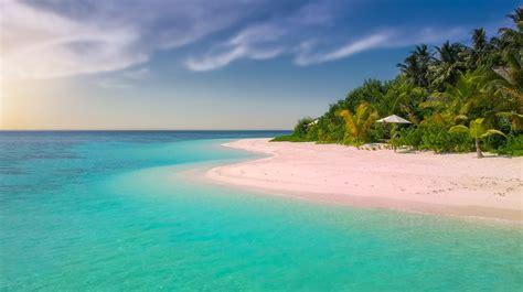 images of beaches paradise island palm 183 free photo on pixabay
