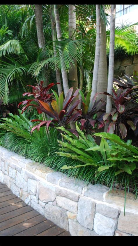 25 best ideas about tropical gardens on