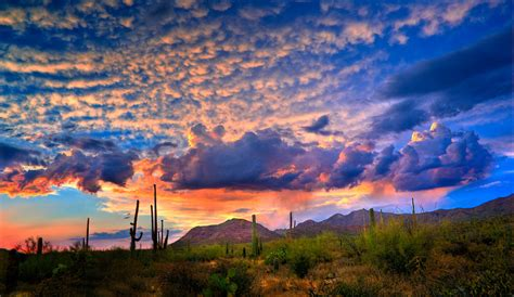 Detox In Arizona by Tucson Inpatient Detox Center For Addiction Recovery Services