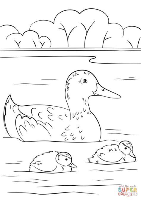 imagenes para colorear un pato dibujo de pato con patitos para colorear