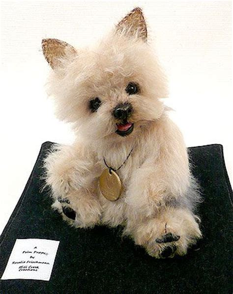 palm puppies 10 best images about stuffed animals dogs on real yorkie and leather