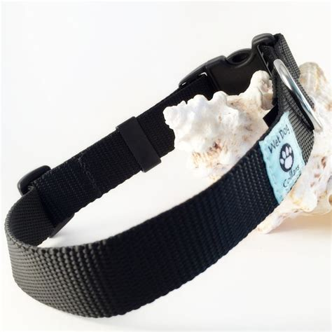 boat dog collar 112 best boat dogs images on pinterest boats doggies