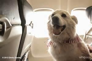Dierks Bentley Jake Pressroom Dierks Bentley Loses His Longtime Canine