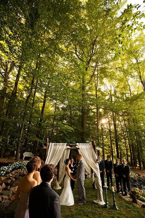 intimate backyard wedding the wedding pinterest