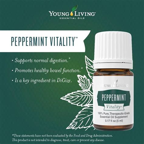 Jen 20ml Peppermint Essential Essensial 17 best images about yl essential oils vitality on