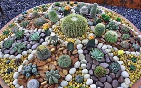 imagenes de jardines hechos con piedras c 243 mo hacer jardines peque 241 os con piedras de colores o