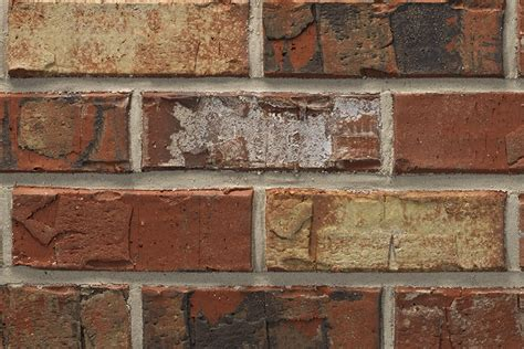 acme brick colors acme brick color sles pictures to pin on