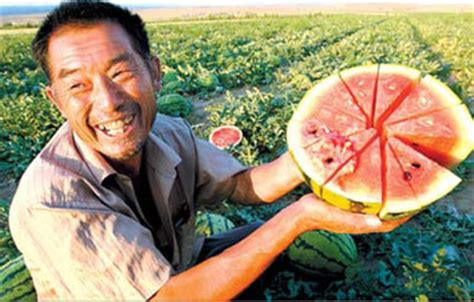 Can Watermelon Cause Stool by Water Purification Vs Watermelon In China Don Canada