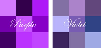 color purple differences between book and difference between violet and purple