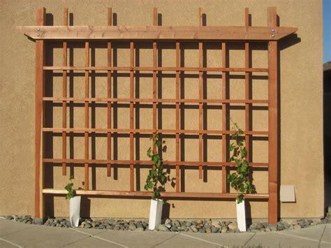 Wooden Wall Trellis Wall Grape Trellis By Cantil3v3r Lumberjocks