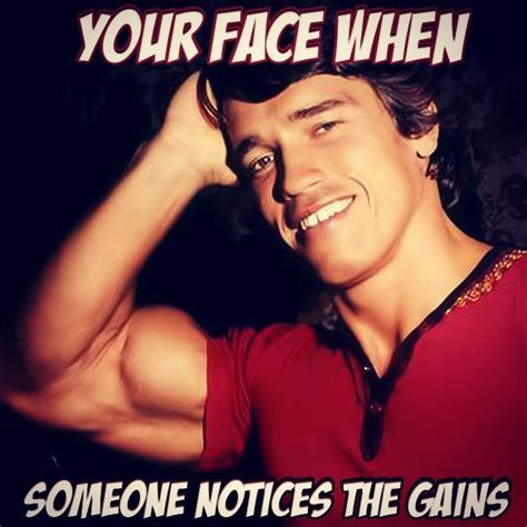 Arnold Gym Memes - post your favorite gym memes page 4 the student room