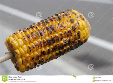 corn on a stick grilled corn on a stick royalty free stock images image 14741909
