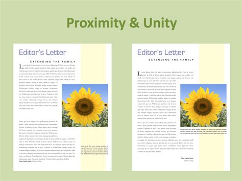 graphic design unity definition graphic design principles definition and basics you need