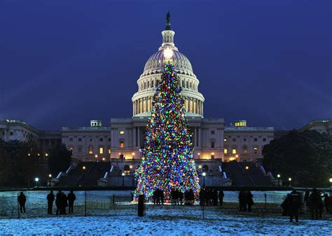 dc christmas trees the best light displays events in washington dc