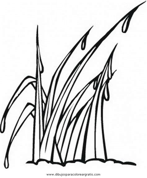 free coloring pages grass free grass for coloring pages