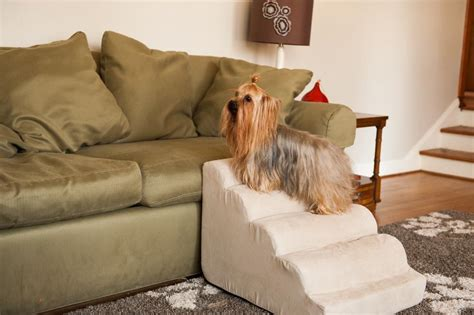 dog stairs for couch dog r for sofa emejing indoor pet r contemporary
