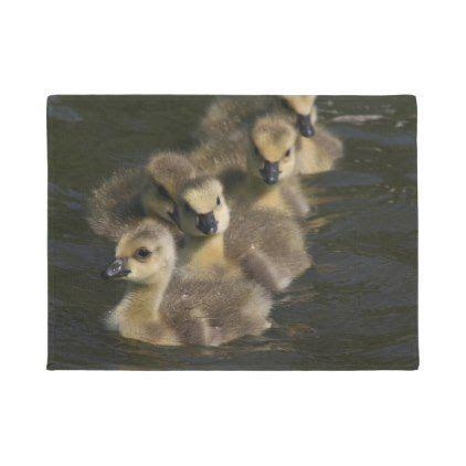 baby canada geese goslings wildlife animal doormat