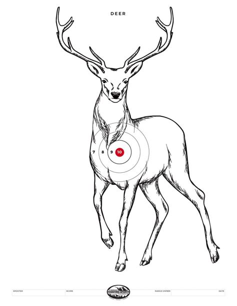 printable deer shooting targets printable shooting targets and gun targets nssf