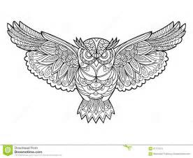 owl coloring book adults vector stock vector image 67717613