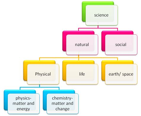 branches of science flowchart physical science flashcards by proprofs