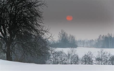 hd red moon  winter scene wallpaper
