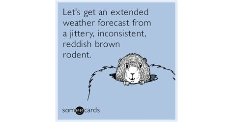 groundhog day weather report let s get an extended weather forecast from a jittery