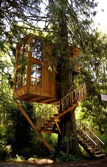 top   treehouse ideas wooden  designs
