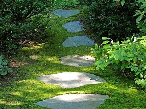 vialetto giardino vialetto in giardino con pietre irregolari come